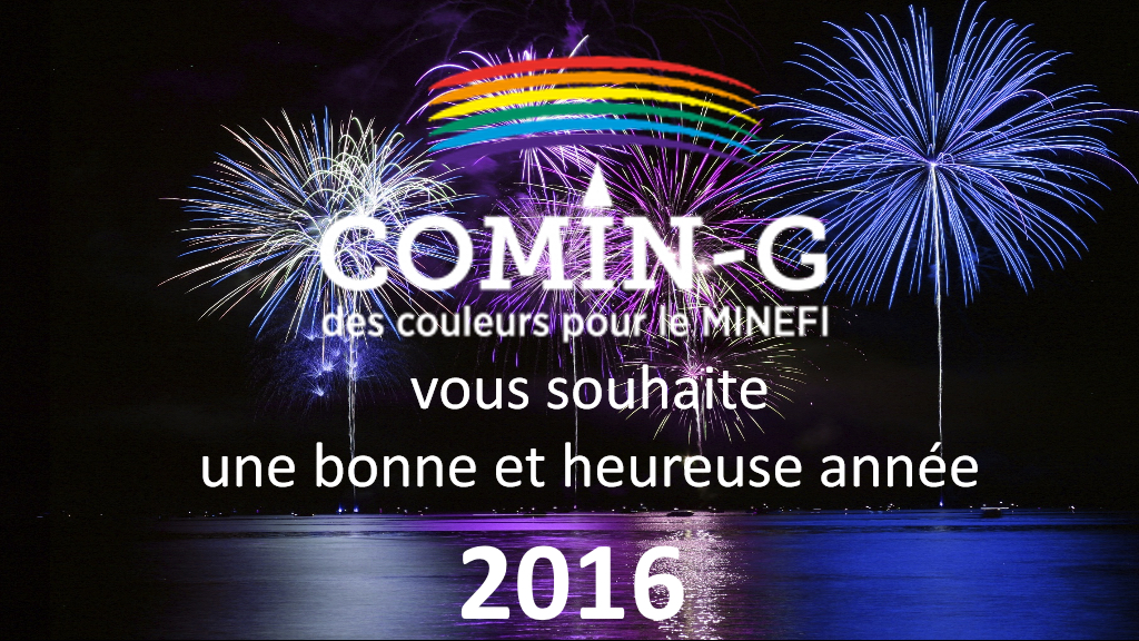 Voeux2016-Comin-G